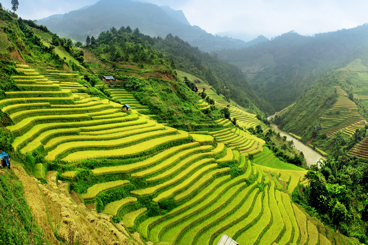 6 Day Vietnam Tour with flights – Air Asia Sale