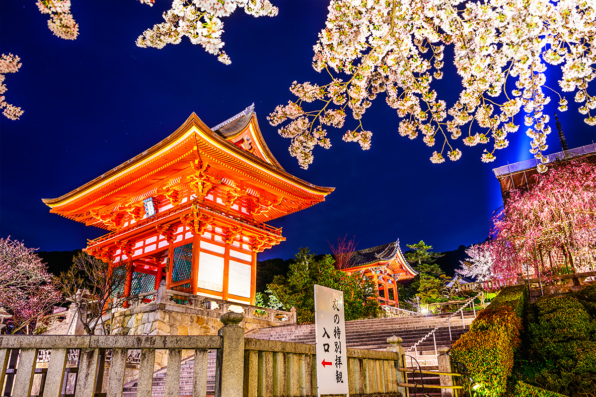 Japan Land of the Rising Sun – 11 Day Tour with flights  (Copy)