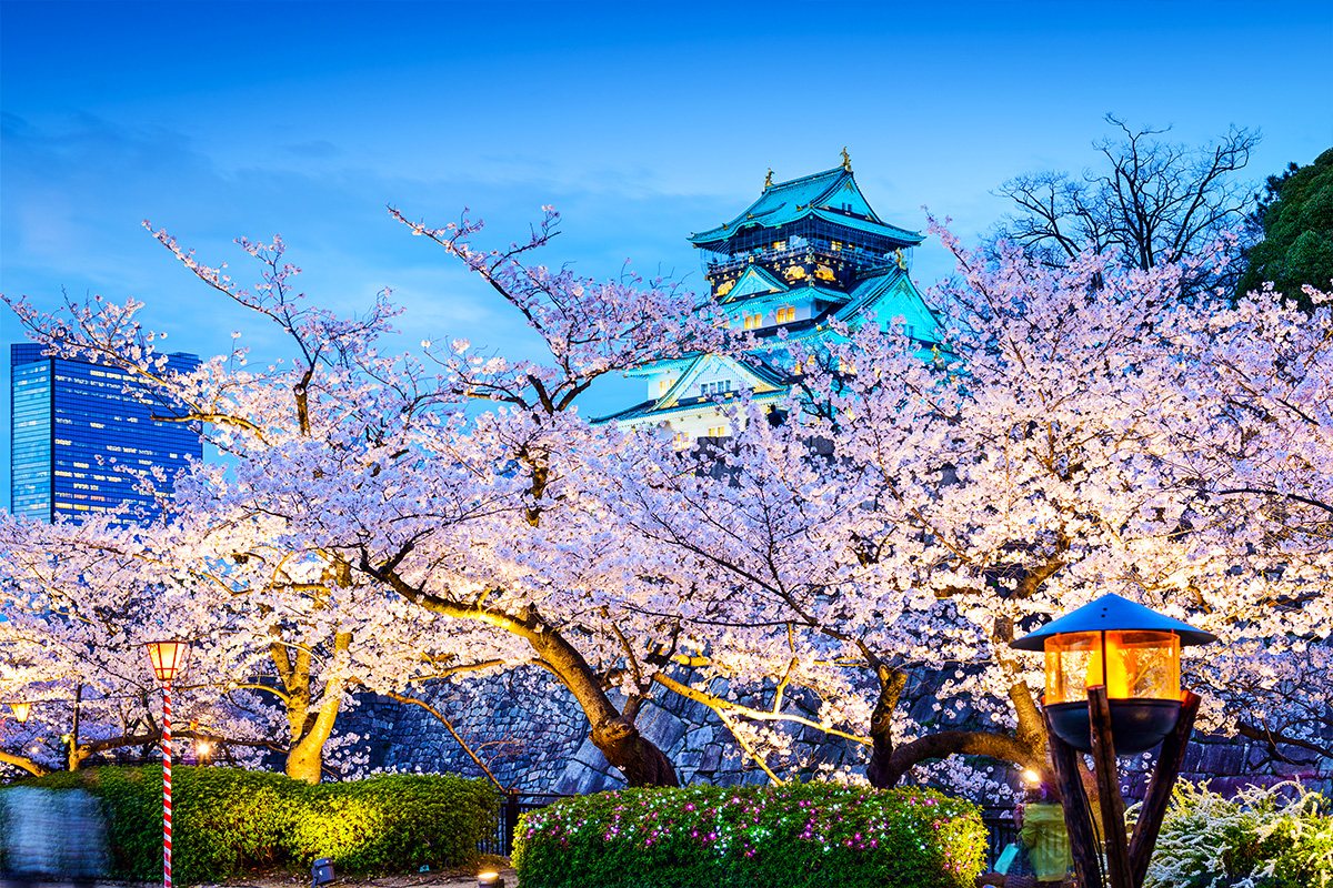 Land of the Rising Sun – Japan – 11 Day Tour with flights