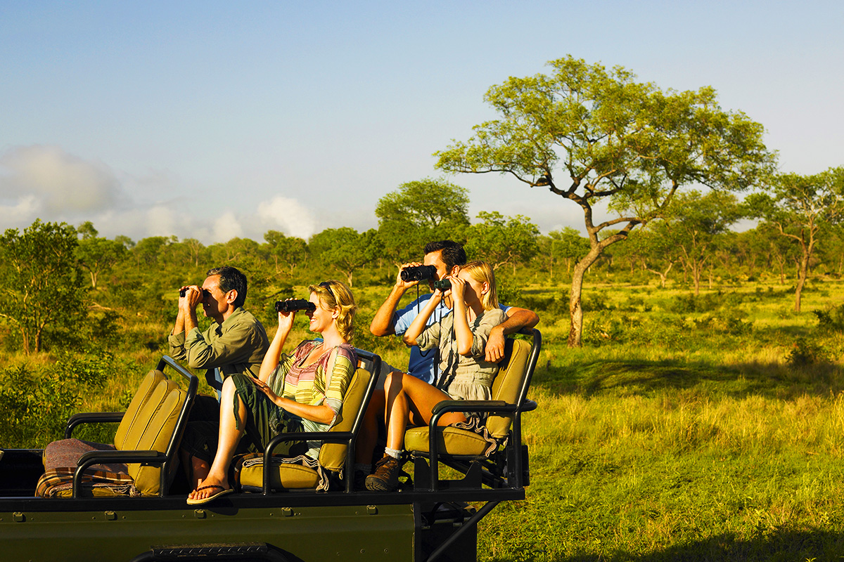 12 and 15 day Africa Tours