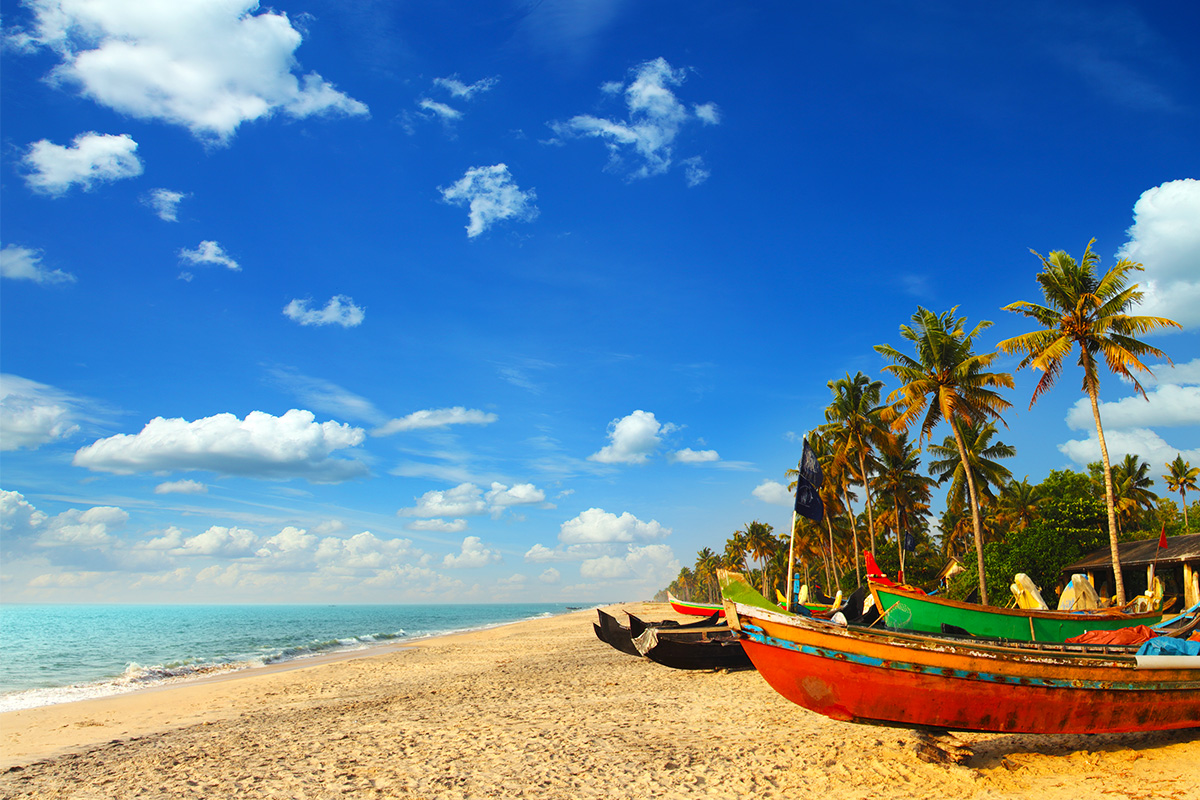 Kerala & the Southern Wonders with flights