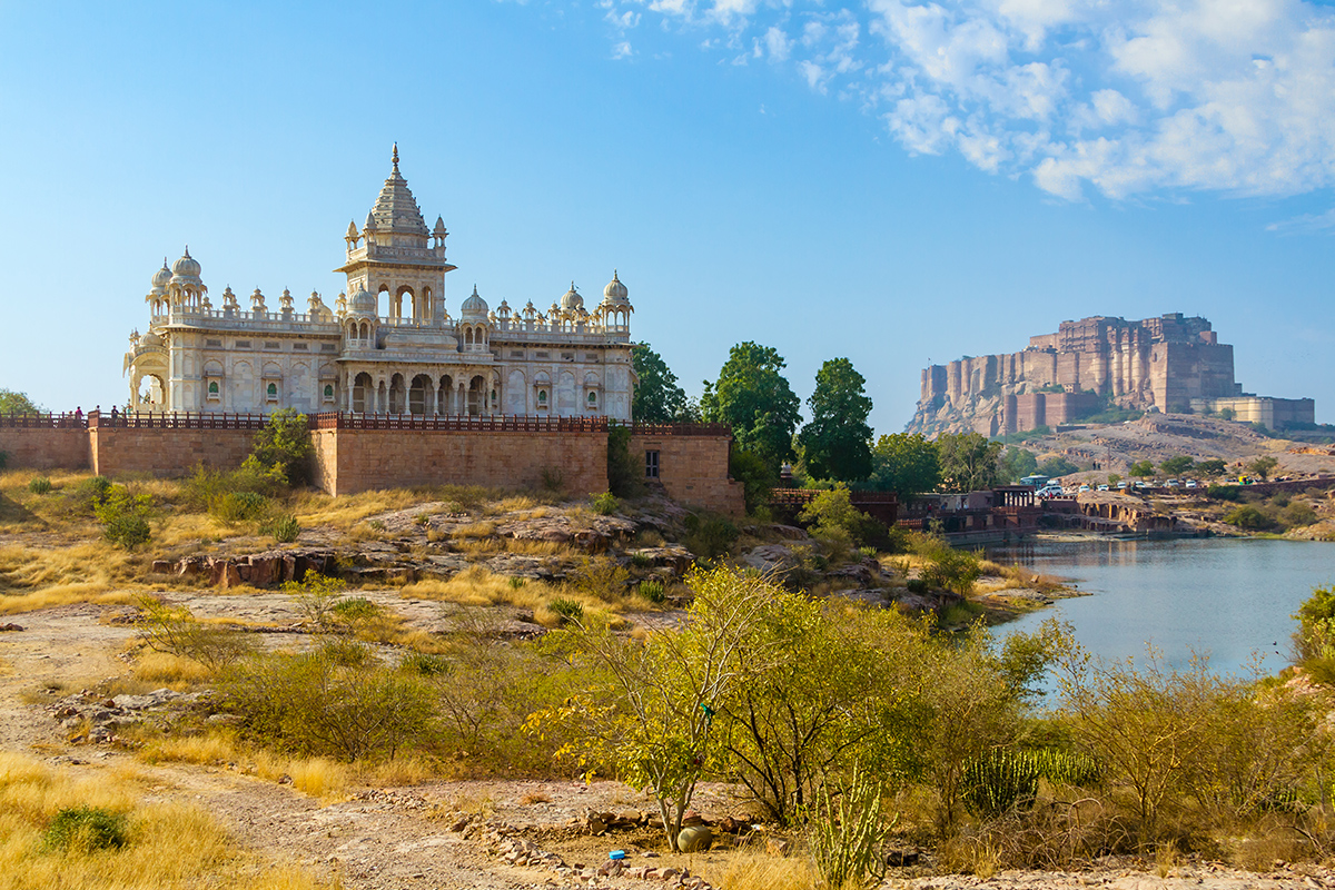 16 Day India Tigers and the Palaces of Rajasthan – Interest Free – Limited Offer