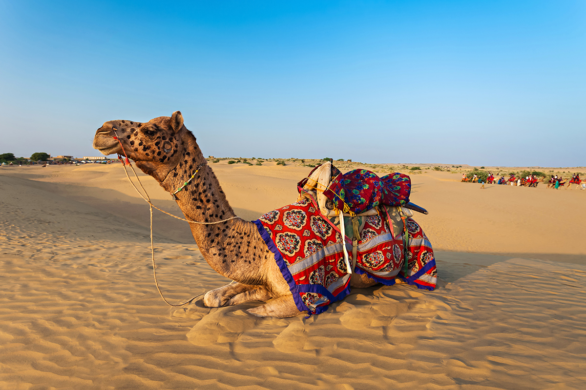 Royal Rajasthan tour with flights – 2018