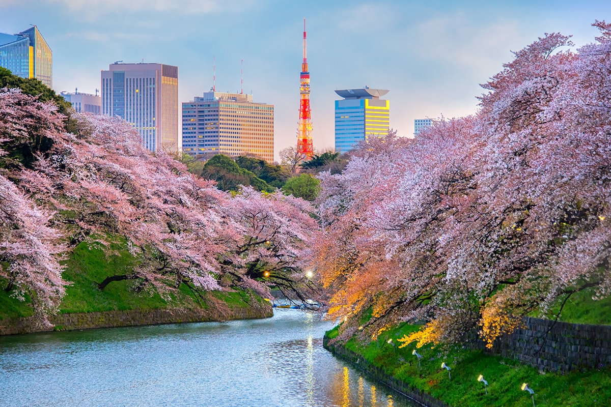 17 Day Best Of Japan By Rail Asia Train Tours Webjet