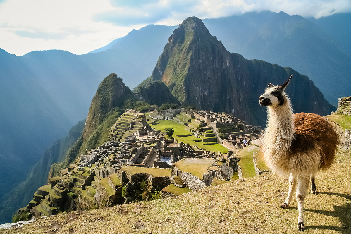 14 day Taste of Machu Picchu and Galapagos