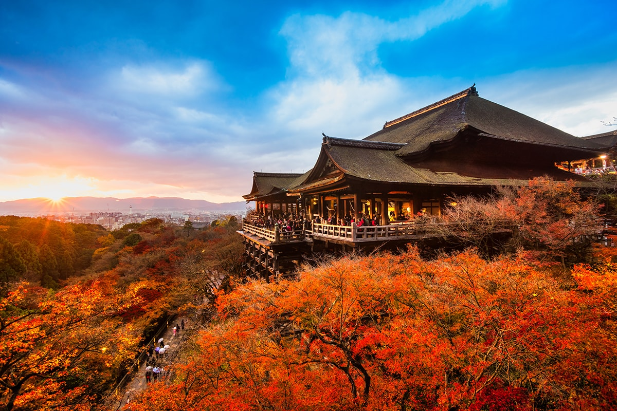 16 day Discover Japan Tour with flights