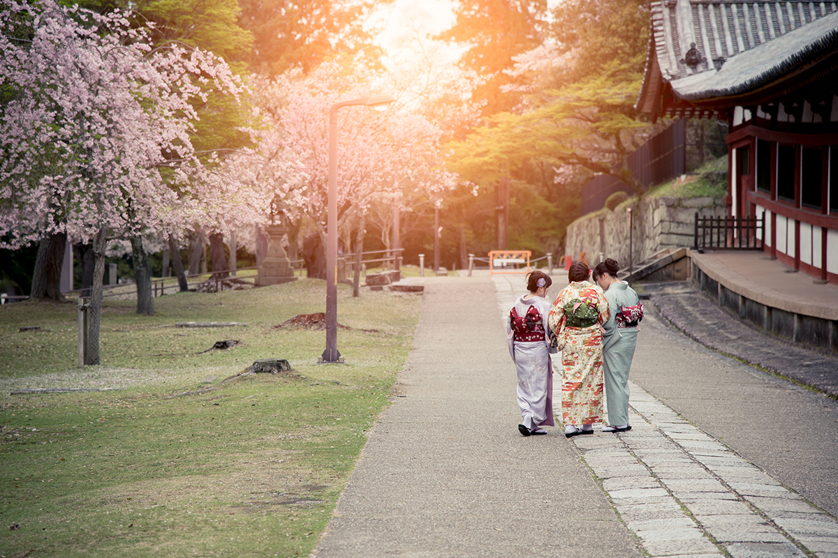 16 Day Discover Japan Tour – Travel Frenzy