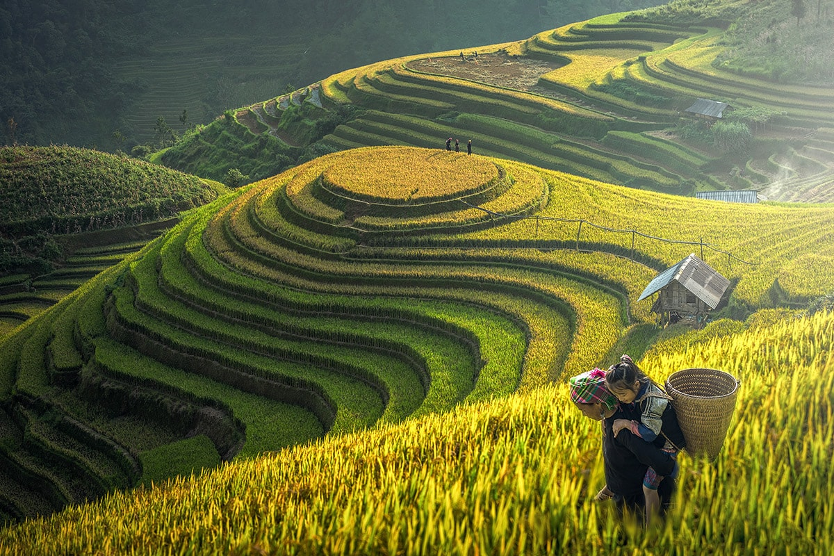14 day Vietnam tour including Sapa with flights
