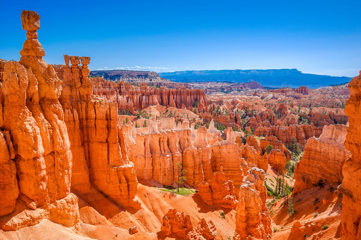 16 day West Coast USA and National Parks with flights