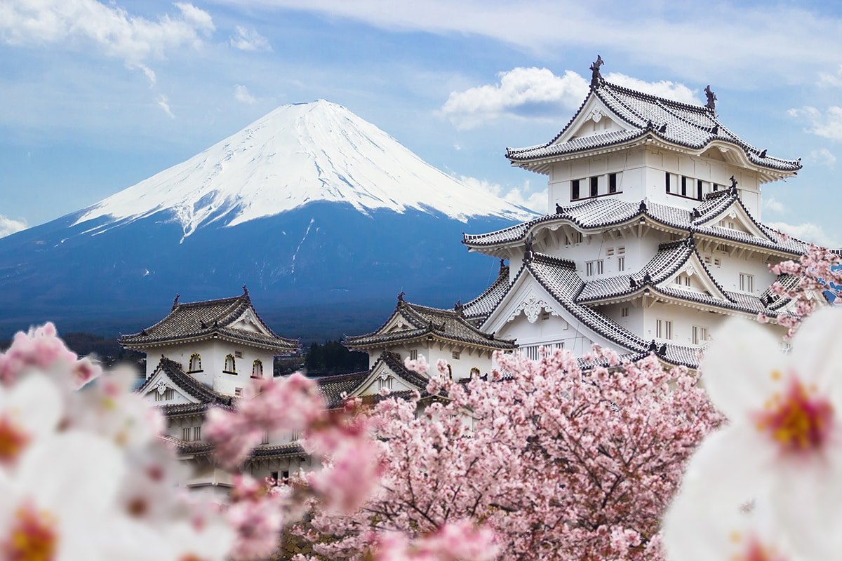 10 day Japan Panorama tour with flights