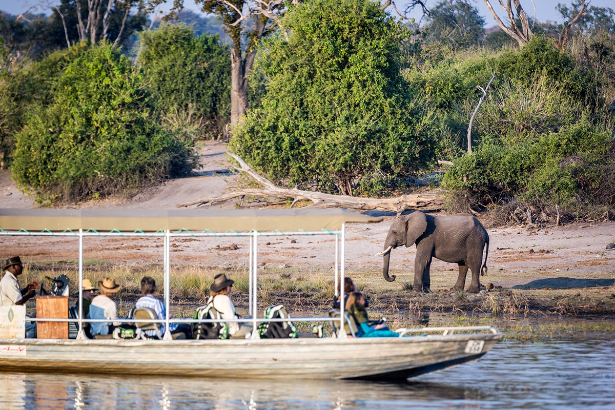 18 day Luxury African safari including Blue Train with flights