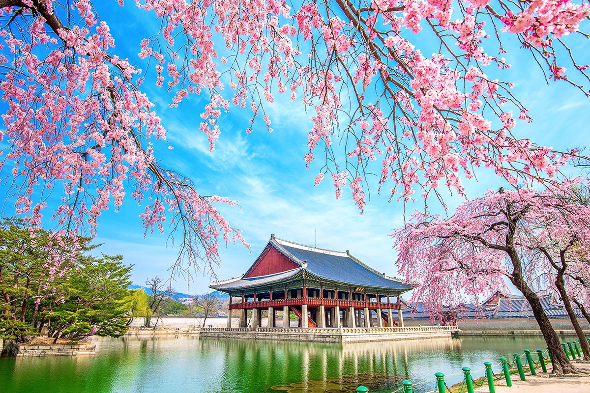 15 day South Korea and Taiwan tour including flights