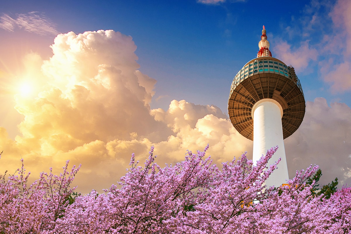 14 day South Korea and Japan tour including flights