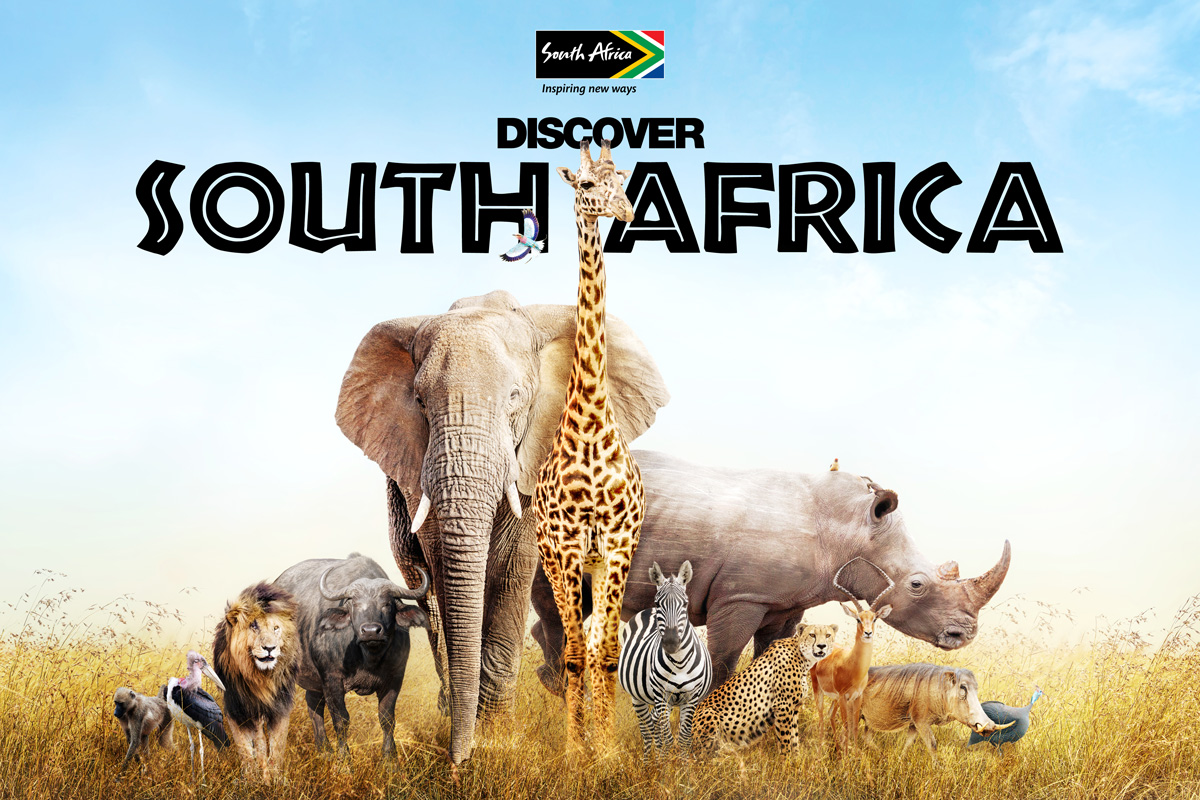 12 day Kruger to Cape Town African safari with flights
