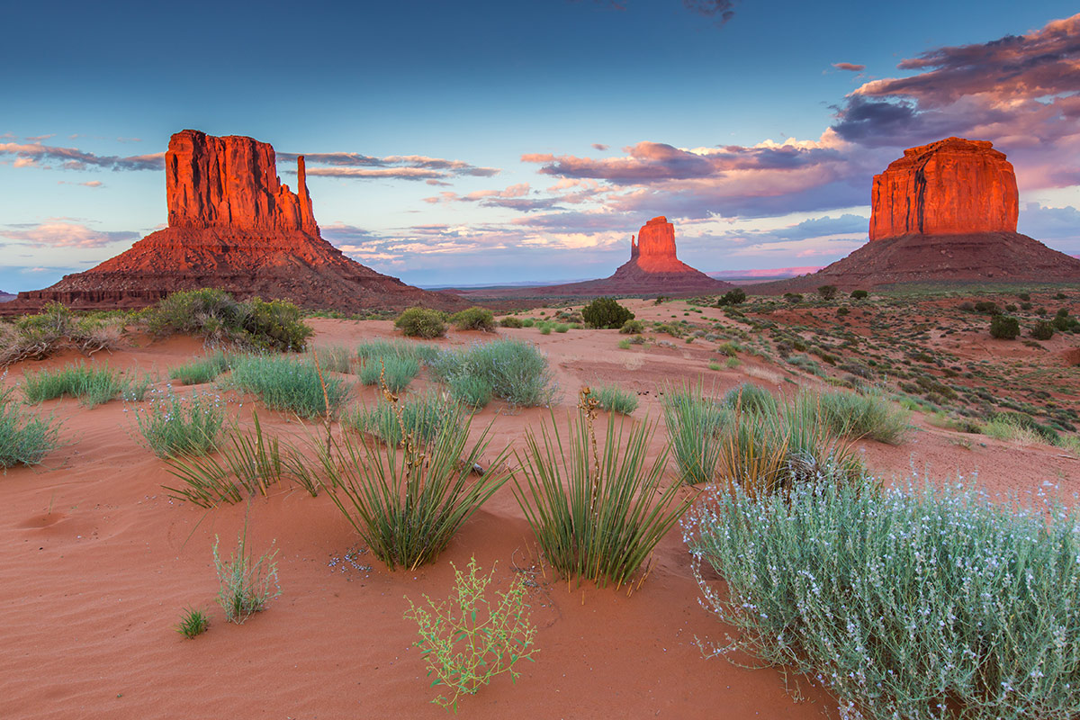 13 day Highlights of USA and National Parks tour with flights