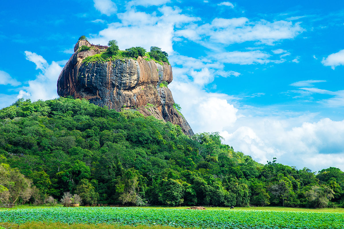 15 day 5-star Unforgettable Sri Lanka tour with free Singapore stopover and flights