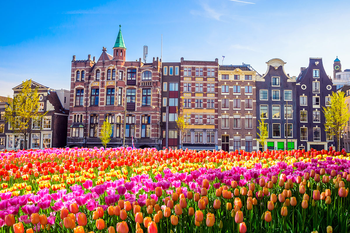 15 day Tulip Time river cruise with Amsterdam, Paris and Emirates flights
