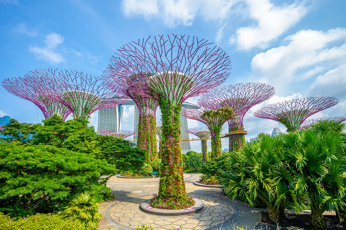 10 day 5-star Singapore and Phuket package with flights