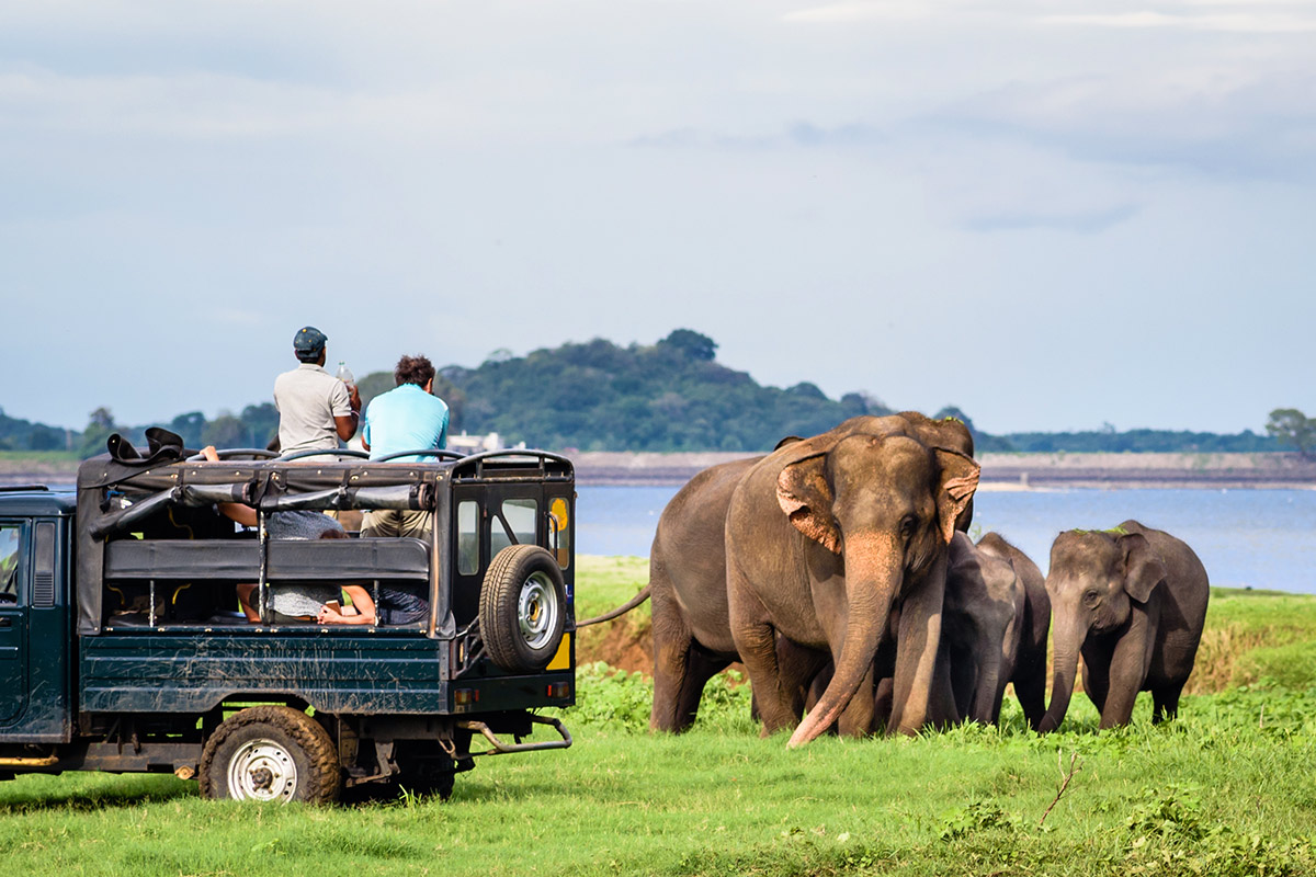19 day India and Sri Lanka tour with Maldives beach break and flights