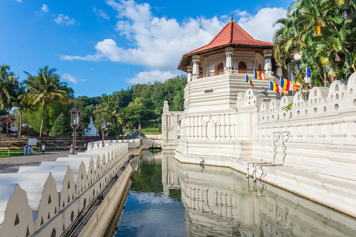 9 day Taste of Sri Lanka tour with flights