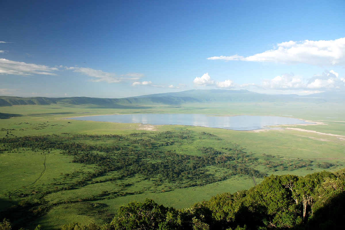 14 day East African Wildlife safari with volcanic crater tour and flights