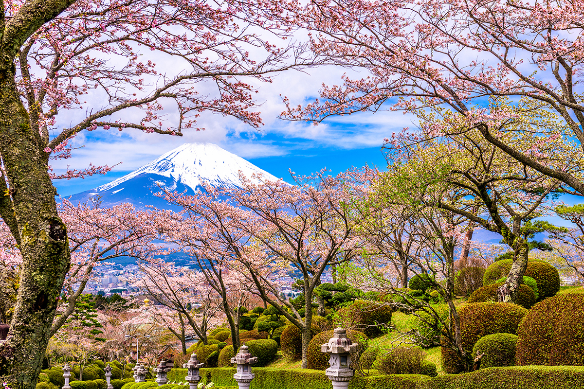 15 day Discover Japan tour with flights